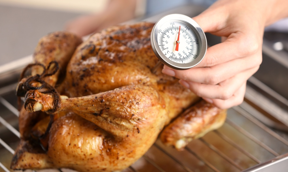 How to Insert a Meat Thermometer Into Turkey