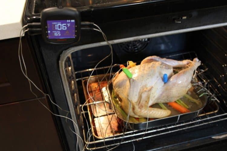 Tenergy Solis Meat Thermometer Monitoring Turkey temperatures in multiple spots