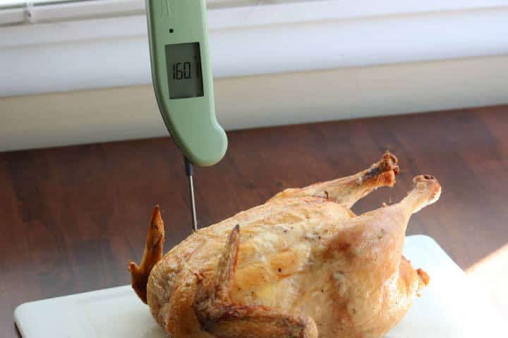 A whole roasted chicken at 160 degrees Fahrenheit on the Thermapen MK4 meat thermometer.