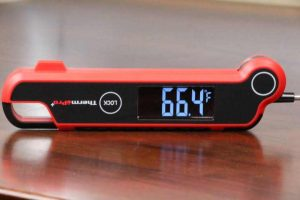 ThermoPro TP620 Meat Thermometer Review