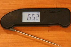 Thermapen ONE Review